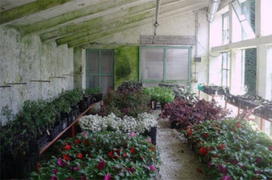 bassano_-giardino_parolini_-_INTERNET_-_540_X_serre_in_fiore_-_2012_-_-_