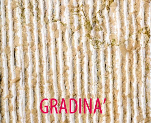 x_internet_-_001_-_kobe_-_GRADINA261