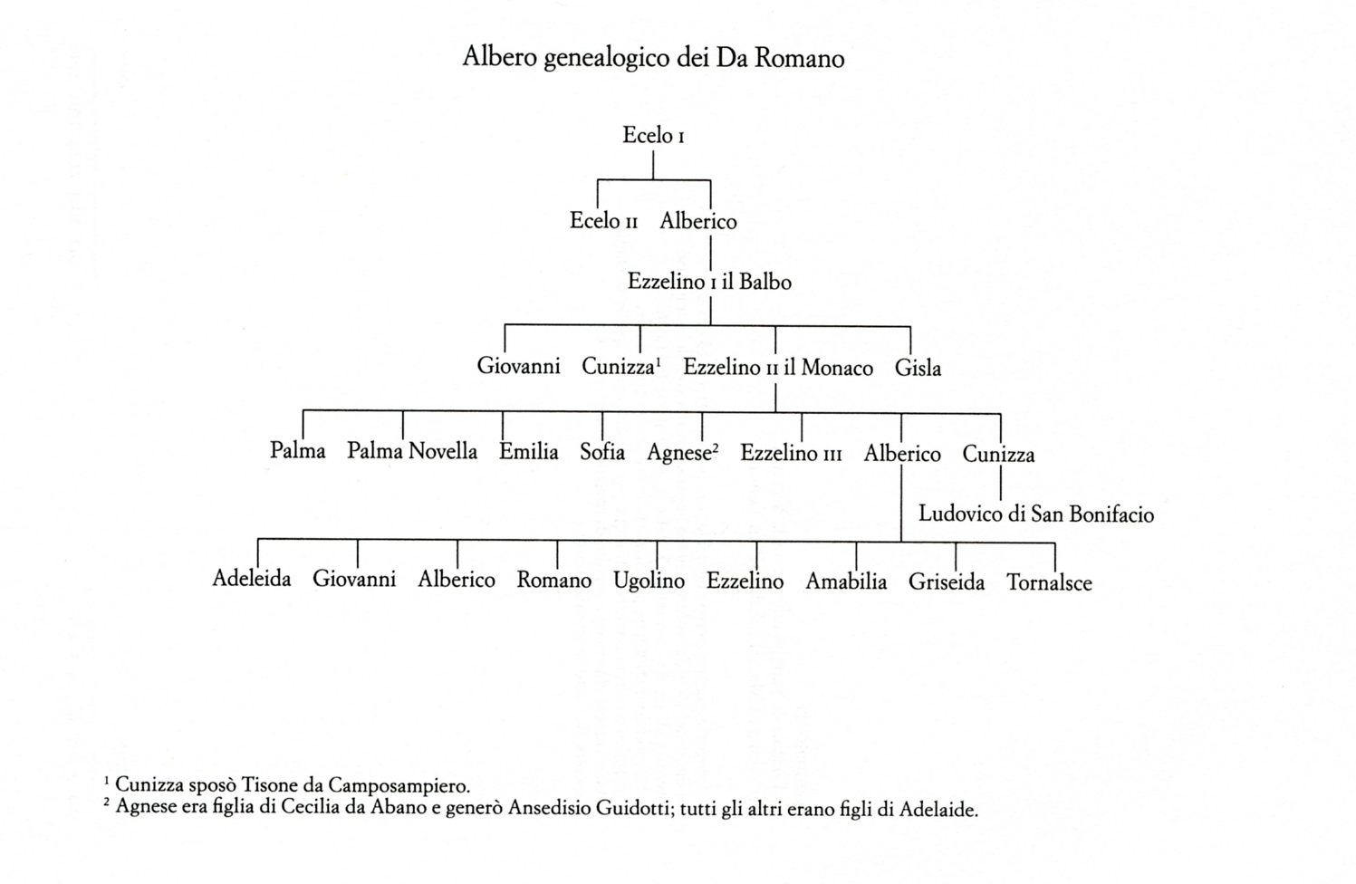 LIBRO-albero447