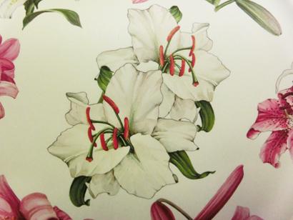 carteria_-_carte_decorative_-_dettaglio_-_SI_SI_OK_OK_-_CIMG0735