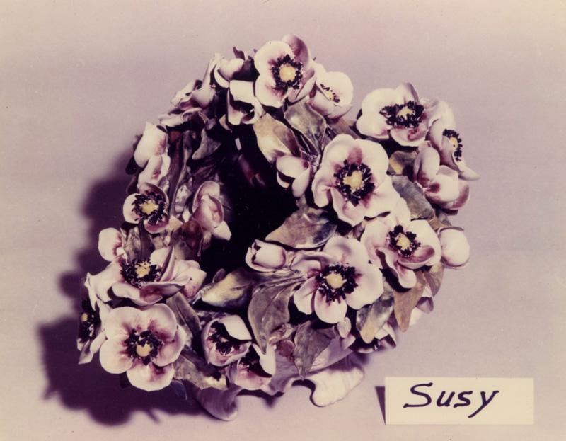 ZEN_-_901_---------800x623-----_SUSY_901