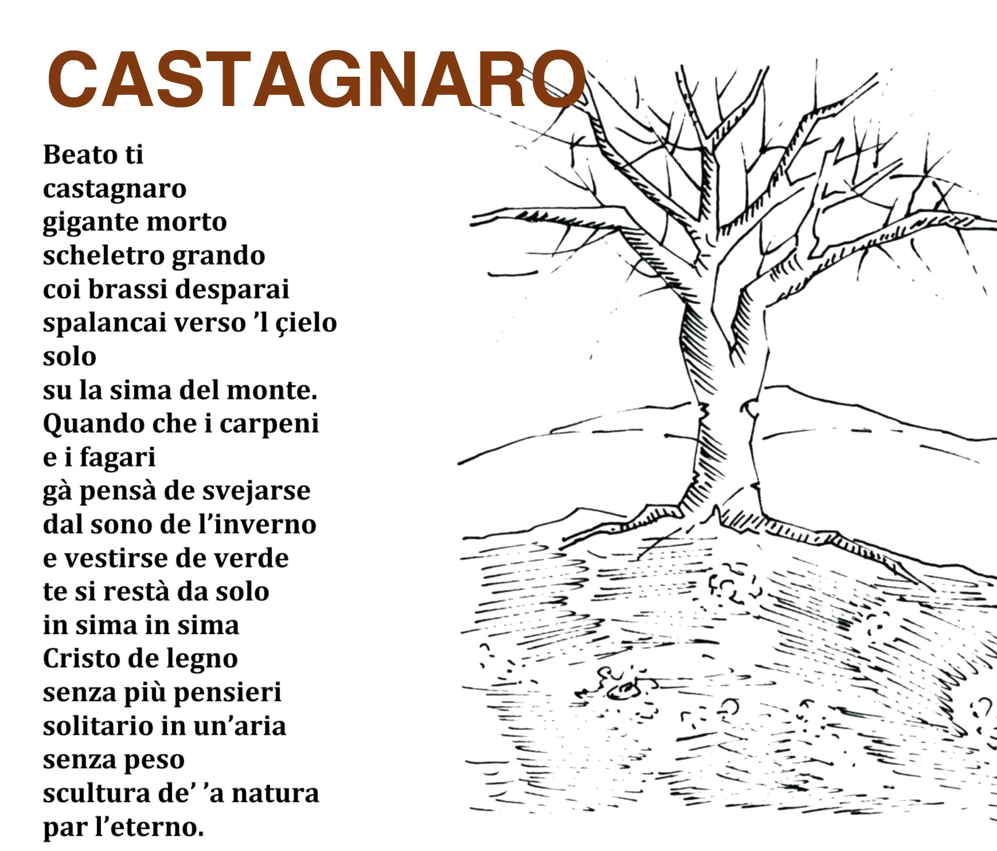 zz_-_pisto_-_castagnaro_-_tutto__copia