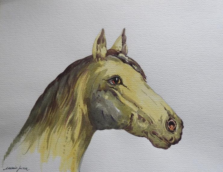 pozza_mario_-_acquarello_-_740x_---cavallo_30x40_-_DSCN2636